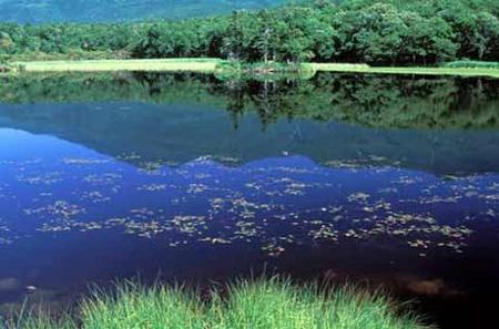 旅游要趁早——北海道知床五湖明年限制客流
