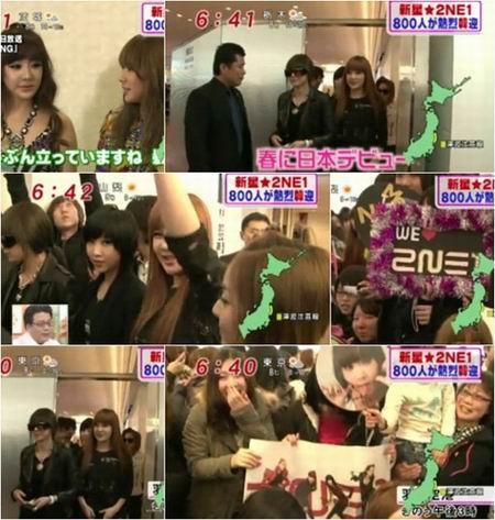 2NE1进军日本 引爆粉丝热情
