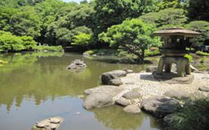 日本的西洋式庭园——旧古河庭园