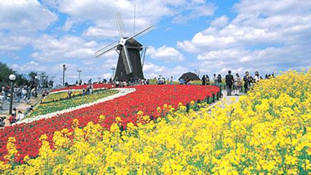 花开四季的日本花博纪念公园——鹤见绿地