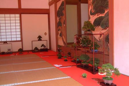 京都著名赏梅花红叶圣地——随心院