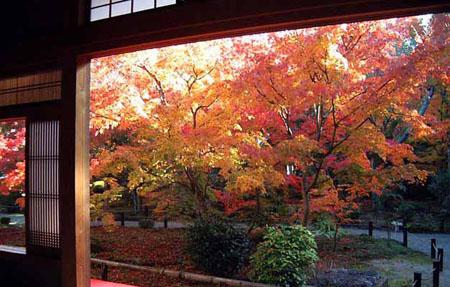 日本最早学校——圆光寺
