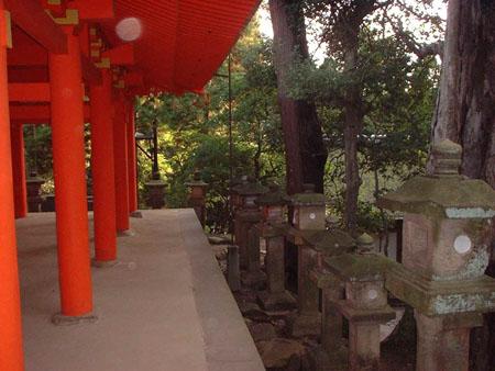 漫步日本奈良 梦回大唐盛世