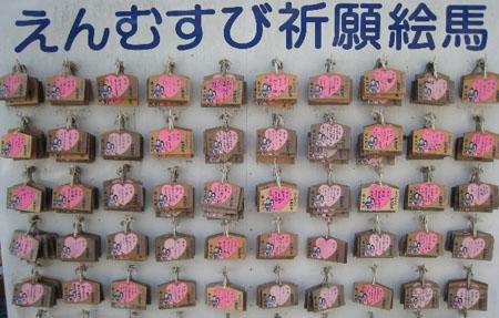 紫藤花园 藤山神社