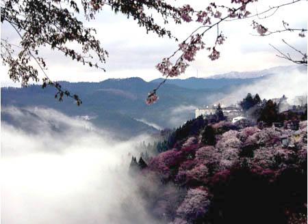『日本温泉』吉野山温泉