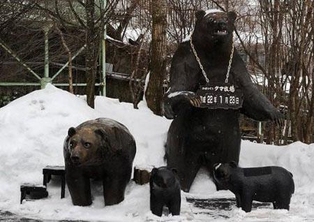 """""""娱""""与熊掌兼得的北海道""""登别熊牧场"""""""