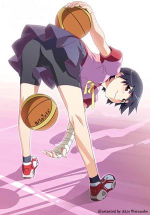 西尾维新《化物语》系列《花物语》将于3月29日发售