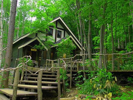 《温柔时刻》中的咖啡屋 富良野森林中的时钟