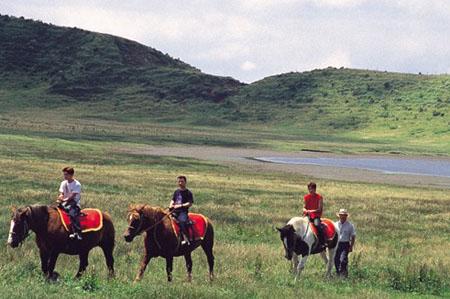 马背上看风景 草千里的塞上风光
