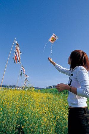 去足羽川畔野餐 享受烂漫春光