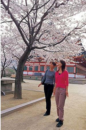 一颗思念妈妈的孝心  濑户田岛的耕三寺