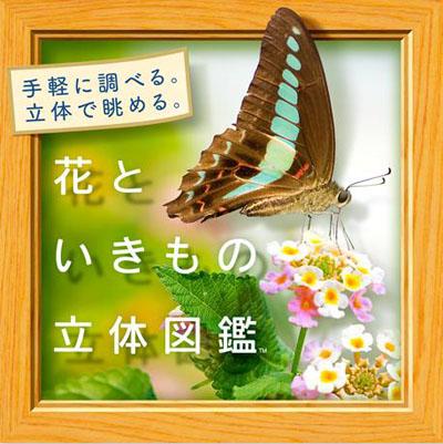 虫鸣鸟啼花更美 《花与生物的立体图鉴》两段游戏介绍视频