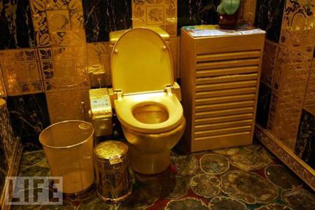 世界十大不可思议厕所排名!!
