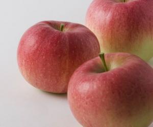 长野县苹果