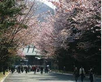 2012赏樱花期预测——香川