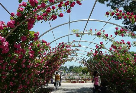 敷岛公园-关东地区_东京都