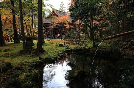 京都大原三千院的静谧