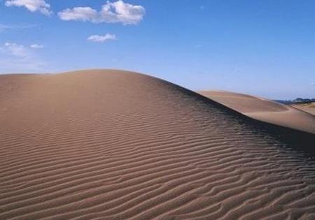 鸟取奇妙的海岸沙丘