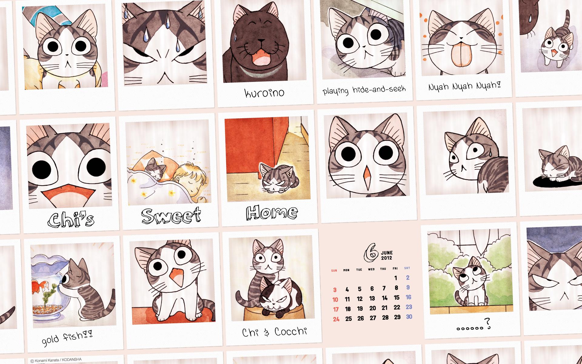 好多只小起!《甜甜私房猫》6月日历壁纸一枚送到!