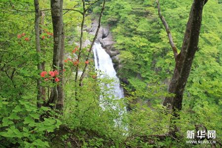 日本100处著名瀑布之一秋保瀑布