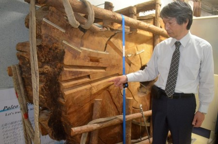 千年古树隐藏天象异常 奈良时代有超新星爆炸