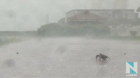 3号台风登陆日本 狂风暴雨天气恶劣