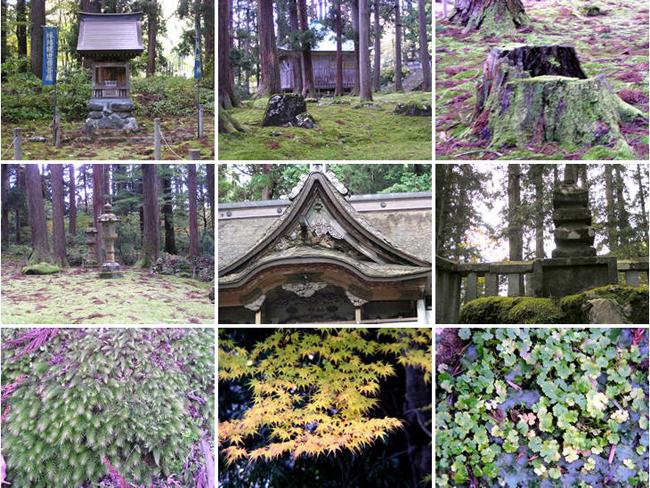 平泉寺 白山神社