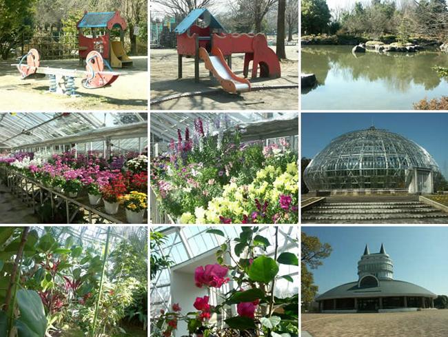 福井综合植物园