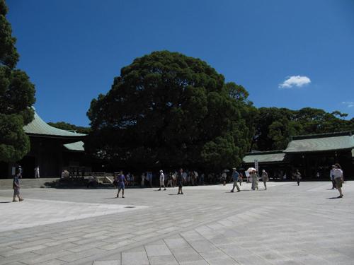 从原宿站出来右行过了神宫桥就是明治神宫,这座庄严肃穆的...