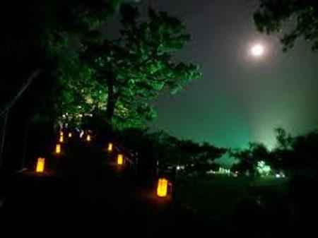 桂滨赏月夜