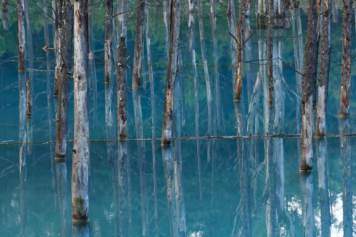 北海道美瑛川间如诗般的风景画