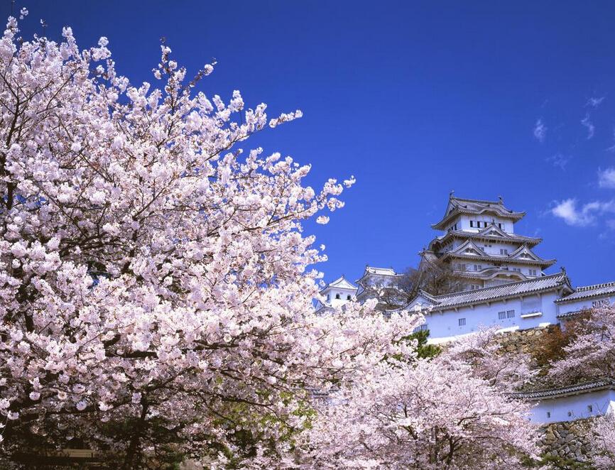 日本旅游接待能力不足致放宽对华签证幅度有限