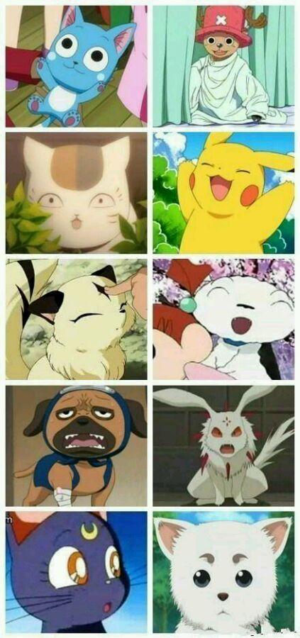 日本人最想收为宠物的动画动物角色Top20