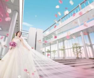 """日本最高楼""""阿倍野HARUKAS""""接受婚礼预约"""