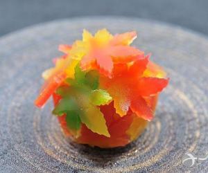 舌尖上的美景!京都秋季特色甜点