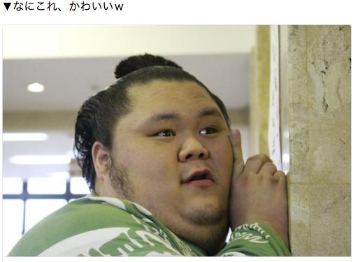 相扑 迷妹 萌感 可爱