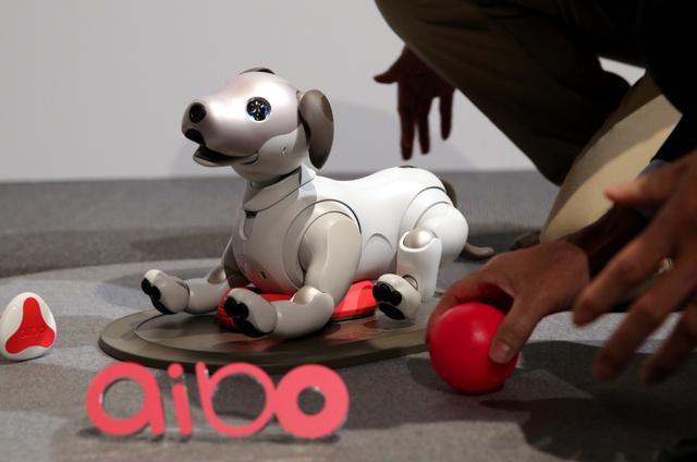 """索尼宠物机器人""""aibo""""预约开始30分钟完售"""