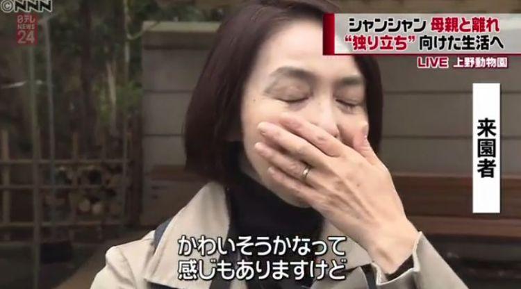 大熊猫香香与妈妈相处的最后一天,整个日本都为之落泪