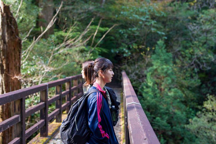 九州游记:鹿儿岛县屋久岛