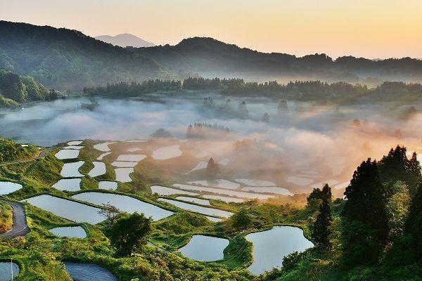 日本的观光公害到底是哪国游客带来的