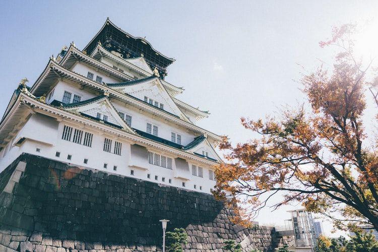 访日游客数量不断上涨,这几个地方增长态势瞩目