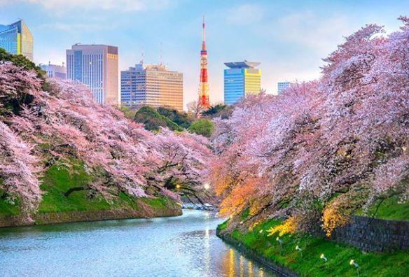 日本成为最具有旅行观光竞争力的亚洲国家