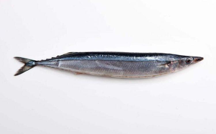 日本秋刀鱼跻身高档食材——捕捞量持续低迷造成价格飙升
