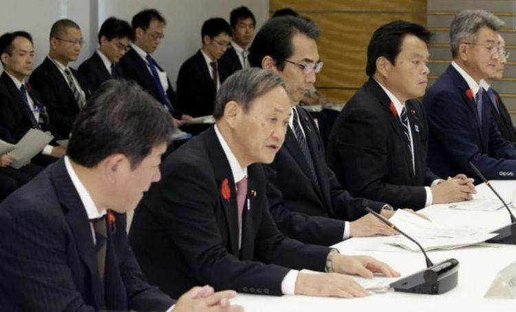 为防止猪瘟蔓延,日本政府召开紧急会议