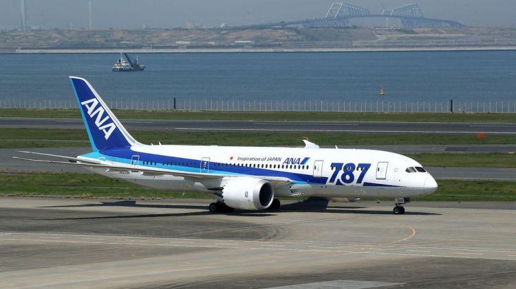 全日空飞机羽田机场起飞后返航迫降,机上人员无伤亡