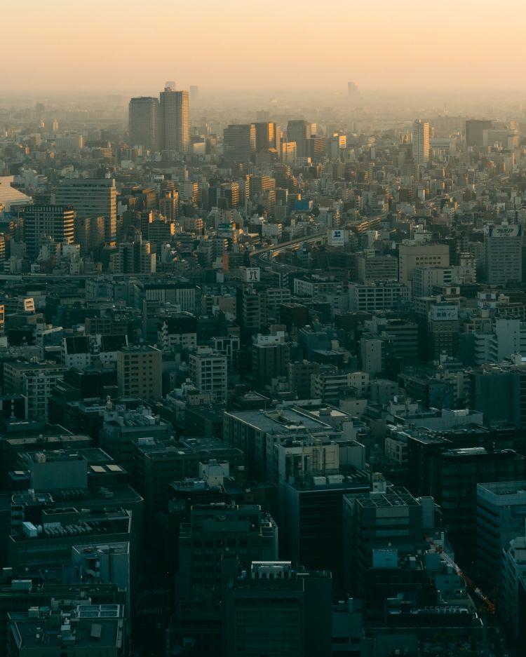 连牛肉都开始造假了,日本制造到底是怎么摔下神坛的?