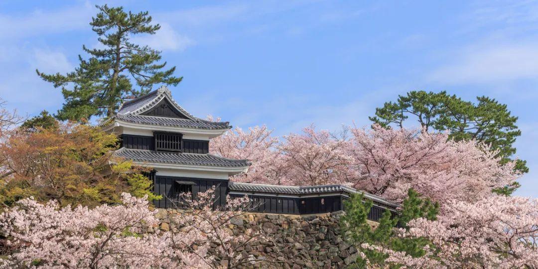 日本旅行丨结缘、赏樱、落日、开启令人心神荡漾的松江之旅